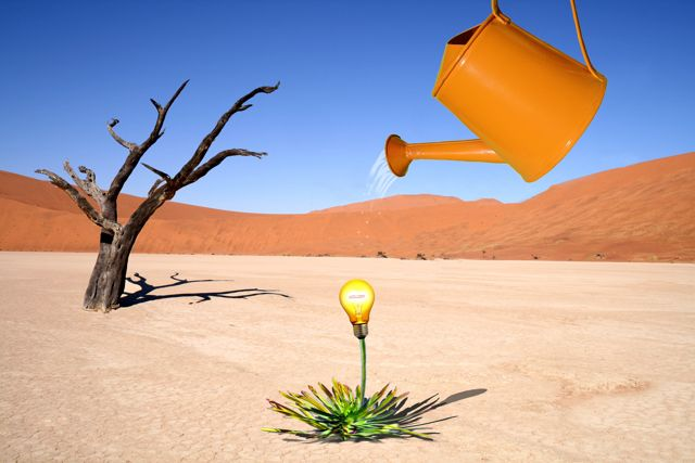 Image of a light bulb emerging from the ground and being watered by a watering can